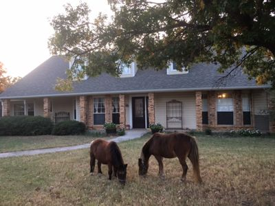 Photo for Unique Large House On Horse Farm Close To Dallas/Ft Worth/Denton