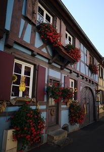 "Photo for ""3-star"" classified cottage near the most beautiful sights of Alsace"