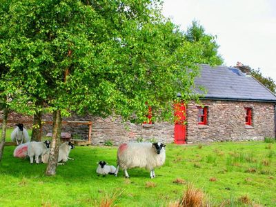 Photo for Mountain farmhouse near Ring of Kerry with stunning views, flocks of sheep