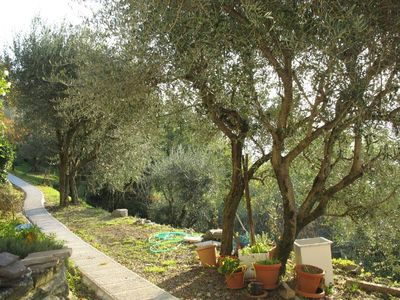 Photo for Holiday on the beautiful green Lunigiana