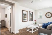3753 Shorebird by the Sea - Beautiful, Spacious New Home Close to Everything