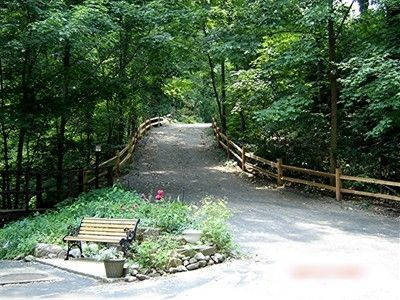 Sanctuaire's beautiful and secluded Driveway