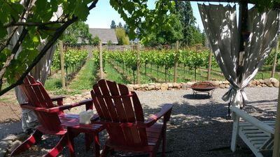 Private vineyard on property with plenty of seating areas to relax.