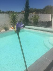 Photo for Bed & Breakfast in villa 15 minutes from the beaches of MARSEILLAN-CAP D'AGDE
