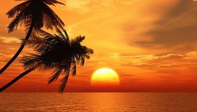 Sunsets for your Memories of a Lifetime