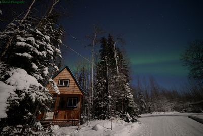 Northern Lights in front of your cabin