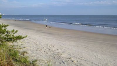 Photo for Affordable Beach Vacation 50 Steps from Ocean View Beach