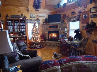 Chocolate Moose - Super Cozy- Secluded Mountain Setting - WIFI -  PRIVATE-Dogs OK - Pigeon Forge