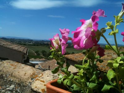 Photo for Terrasse sur la toit, roof terrace, vignobles, wine, Mediterranean, beau village