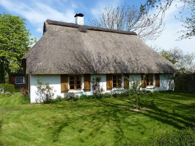 Photo for Organic Kate Mehlhorn - Organic Kate