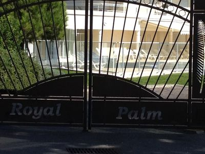 Photo for The spectacular Royal Palm