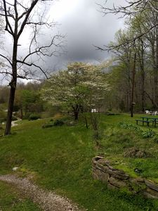 Photo for 1BR House Vacation Rental in Briceville, Tennessee
