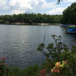 Photo for Gorgeous Lakefront With Direct Access. Amazing Wildlife and Great Fishing!