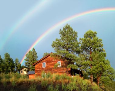 Photo for Split Pine Cabin: Private, spacious retreat & homebase for fun! Downtown