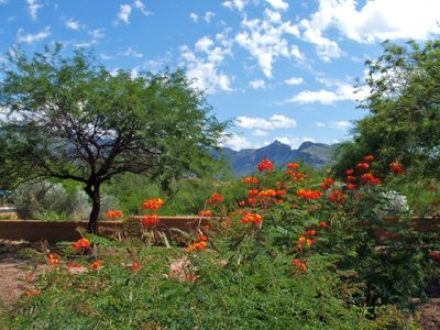 Photo for Tucson 2BR/2BACondo-Enjoy Southwest Style & Comfort in Catalina Foothills