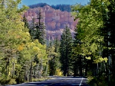 Scenic drive up Cedar Mt. to our home!
