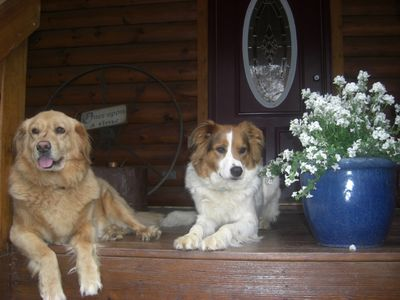 Welcome to PET FRIENDLY, DREAMCATCHER cabin in gated Riverbend, Lake Lure, NC.