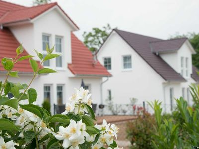 Photo for House (130 sqm) - Ferienanlage Schwabe with swimming pool