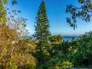 4BR House Vacation Rental in Summerland, California