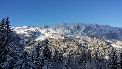 Photo for Meribel - apartment to the slopes of the feet