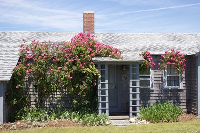 The cottage is covered with lovely, sweet smelling roses.