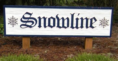 Photo for Snowline #51