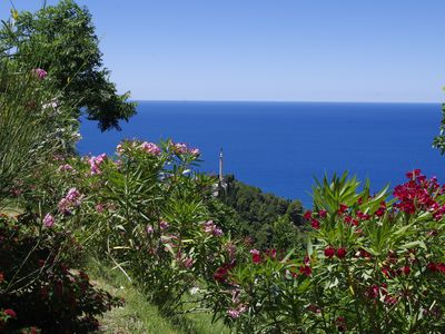 Photo for Ecotourism in the Medieval Village Calabrese, tradition and culture, sea and nature ...