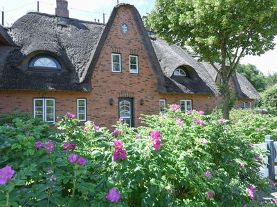 Photo for Holiday home for 7 guests with 125m² in Wyk auf Föhr (96402)