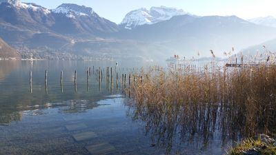 Photo for Cosy Cabin on the shores of Lake Annecy