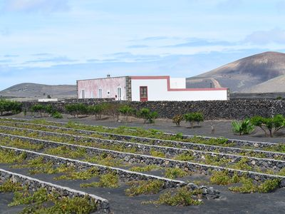Photo for Cool design in historic winery amidst unique volcanic landscape.