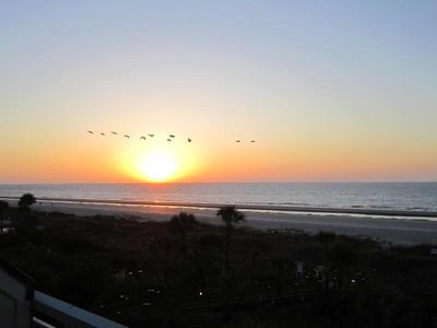 Enjoy the pelicans, dolphins and beach activities from our balcony.