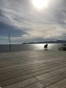 View from the deck of Kapiti Island and the South Island