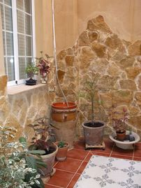 apartment/ flat - 3 rooms - 6 persons