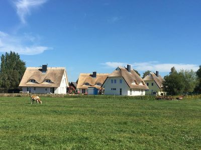 Photo for Family friendly thatched cottage in a quiet cul de sac near the beach, Wi-Fi free