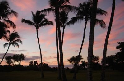Good Morning Paradise in Wailea !