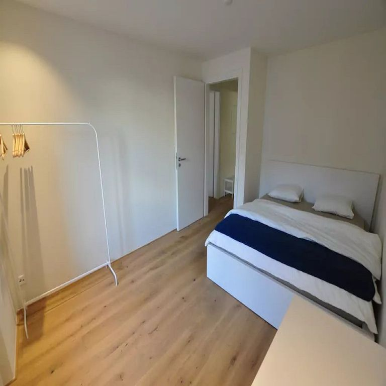 Titlis - Big And Cozy 2.5 Room - Wifi/laundry