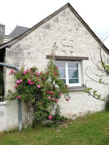 Photo for Cottage in Bourgueil