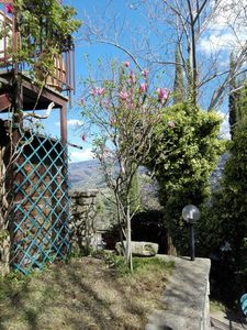 Photo for House with garden and tavern Case Rosse Arcidosso on Monte Amiata