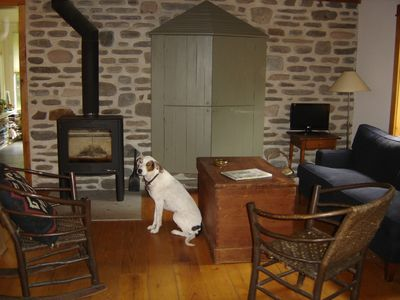Photo for Charming and private,  dog-friendly contempo in Woodstock