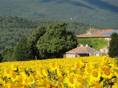 Photo for Cottage in the countryside in the heart of the Luberon