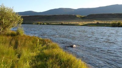 Photo for Elk View Lodge with Madison River Access Near Yellowstone