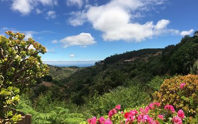 Photo for 1BR Cottage Vacation Rental in Moya, Gran Canaria