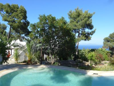 Photo for Villa by the sea in pine forests, Amoni, Greece