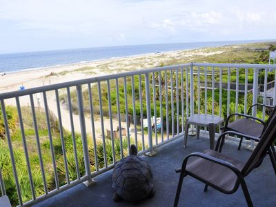 Photo for Renewly renovated stunning ocean front views thru floor to ceiling wall of windo