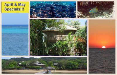 Photo for Mi Casita (Two Bedroom Cabana, Close To Great Snorkeling)