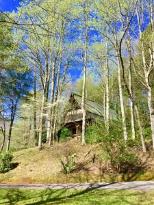 View of Ellijay Cottage from the Driveway