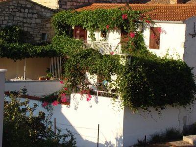 Photo for 1BR Apartment Vacation Rental in Split-Dalmatia County, Op?ina Vis