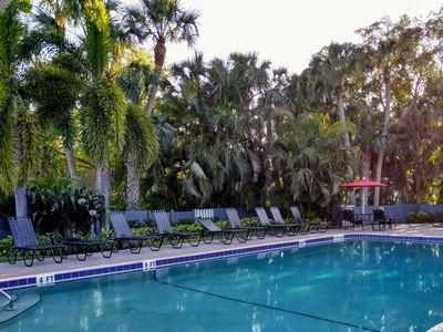 Photo for Tropical Magic Vacation, Walk To IMG, 15 Min To Beaches, Elegant Condo!