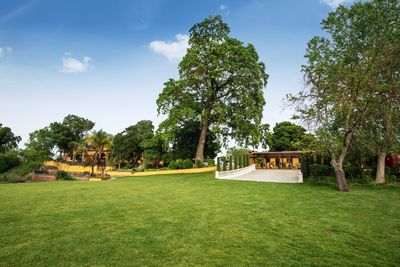 Acres of lush lawn and grand staircases (3)