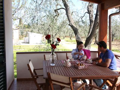 Photo for Houses by the sea and immersed in an olive grove with facilities including Village